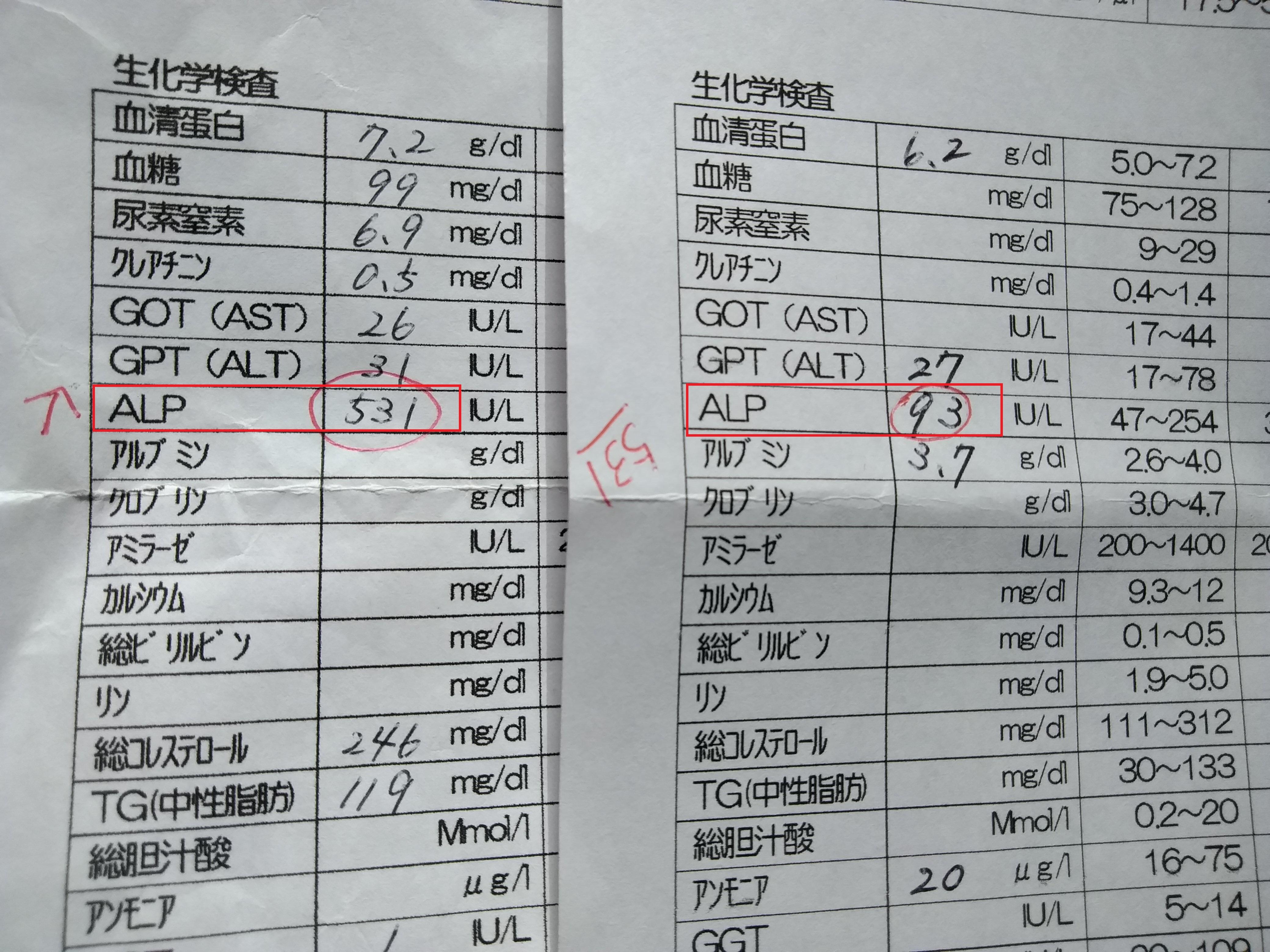 血液検査値2